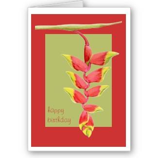 07heliconiabranch birthdaycard