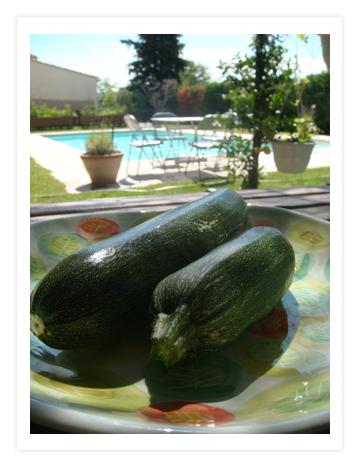 06 June 21 Zucchini