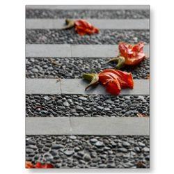 Fallen_petals_postcard