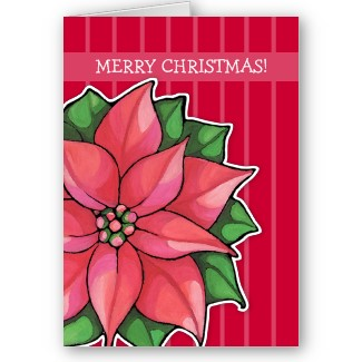 54 poinsettia_joy_red_stripes_christmas_card-p137085355458000691en8cz_325