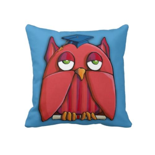 19 red_owl_grad_aqua_full_cushion_american_mojo_pillow-r249154e66101479cb319f56ec8ae44b8_2zbjl_500