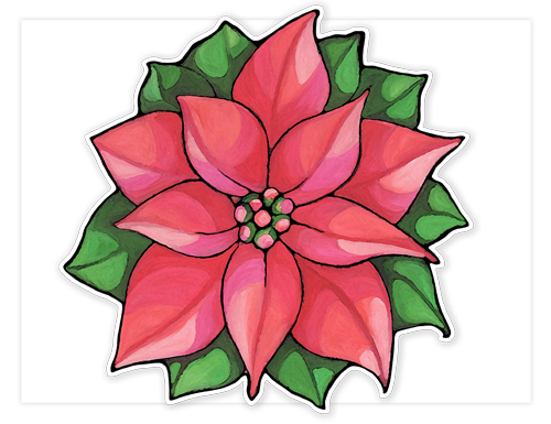 55 Poinsettia Flower