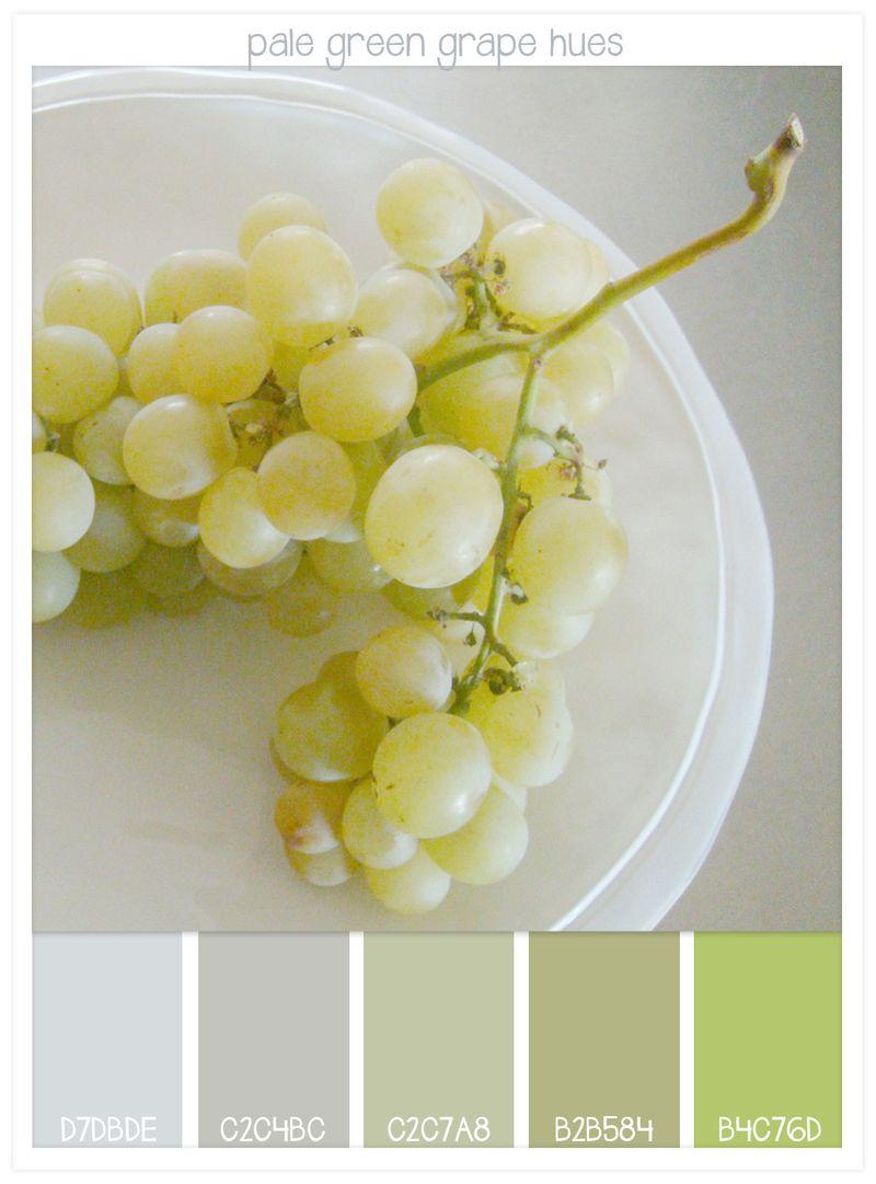 16-pale-green-grapes-hues