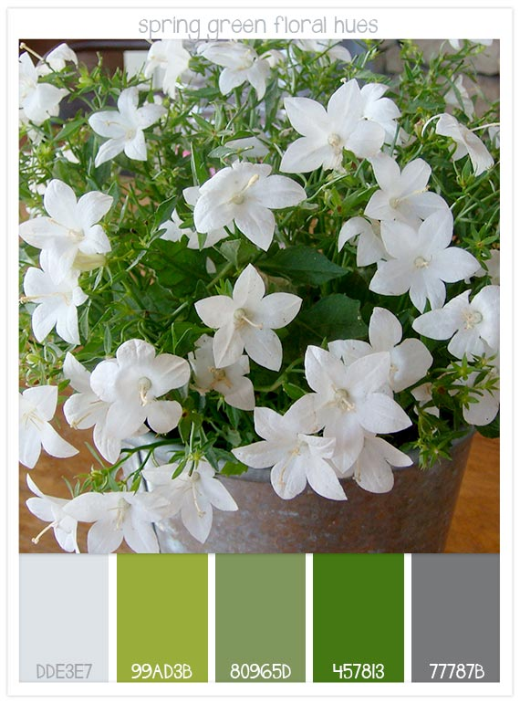 Spring-green-floral-hues