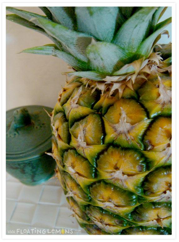 Pineapple-photo-3
