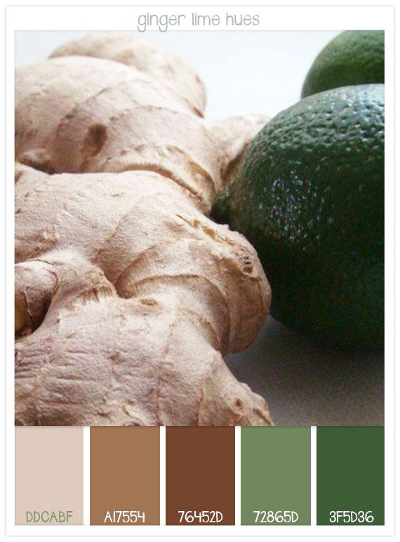 Ginger-lime-hues