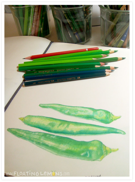 Sketch-green-chillies-2