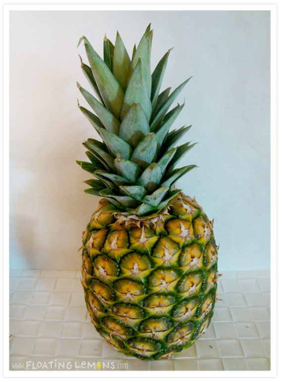 Pineapple-photo-2