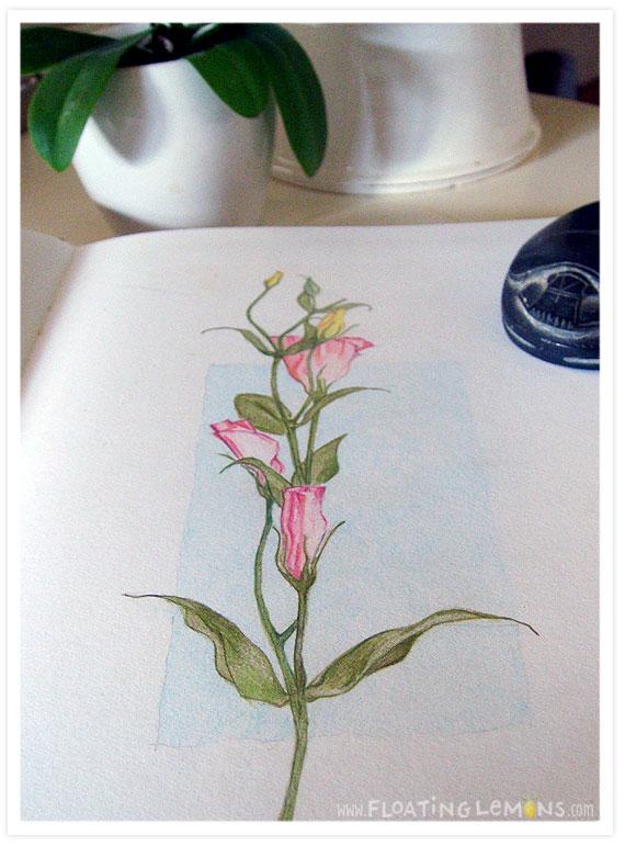 Flower-sketch-1