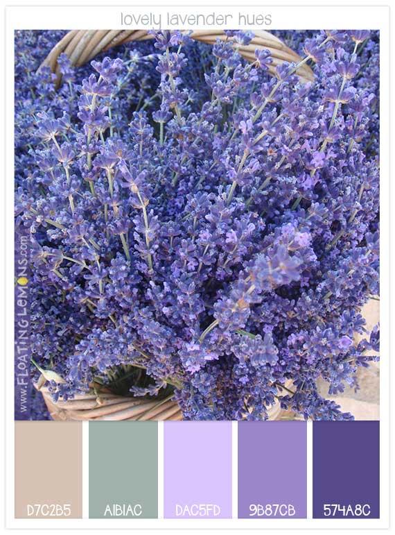 37 lovely-lavender-hues