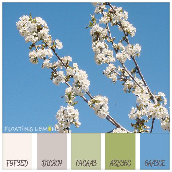 Almond-blossom-hues