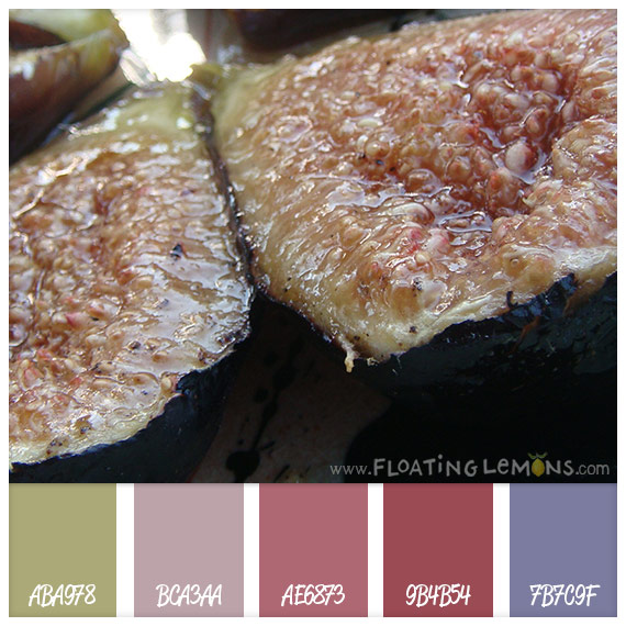 Delicious-fig-hues