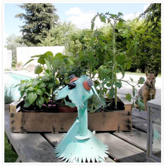 Veggie-garden-1