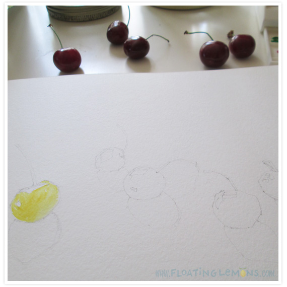 Summer-cherries-5
