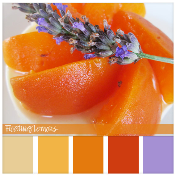 Apricot Delice Hues by Floating Lemons