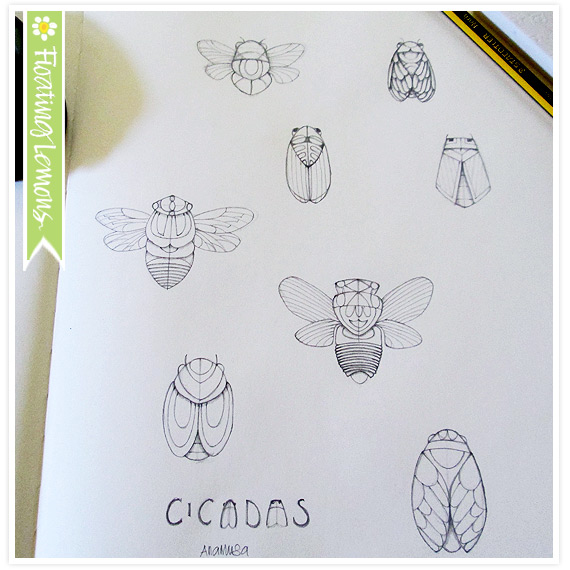 Cicadas sketch Floating Lemons