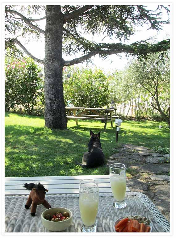 Lazy-sunday-provence-7