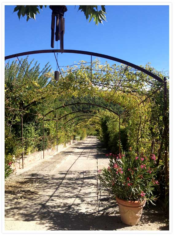 Val Joannis gardens 1
