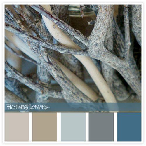 Wood-twig-hues