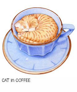 1-cat-in-coffee