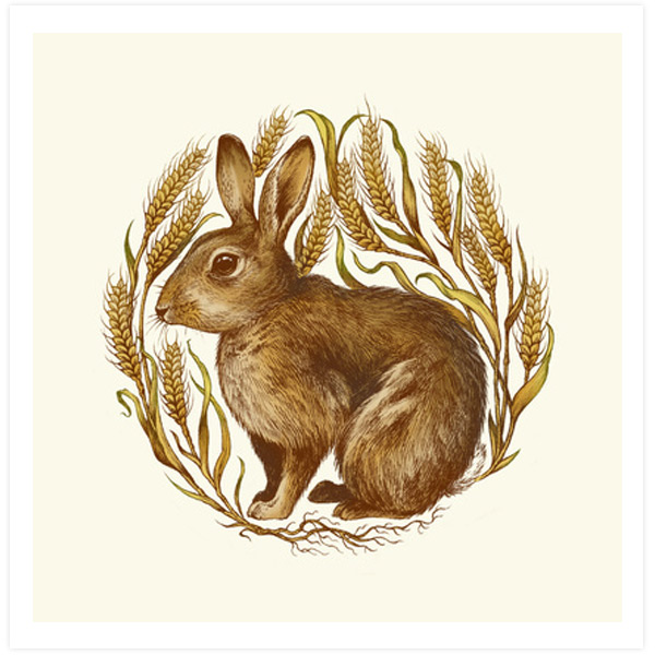 Rabbit in Wheat by Teagan White