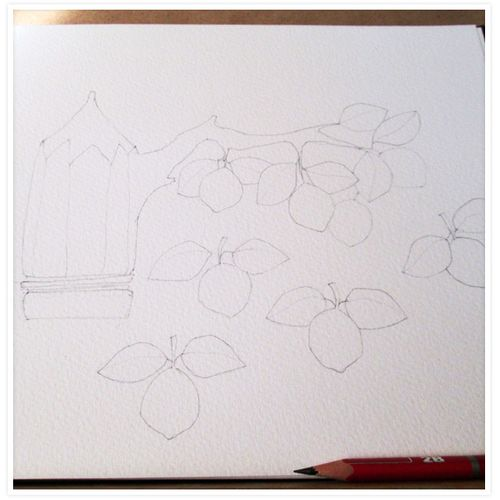 1-pencil-lemon-tree-floating-lemons
