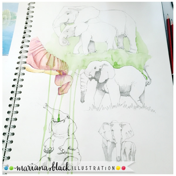 Sketching-elephants-2-by-Mariana-Black