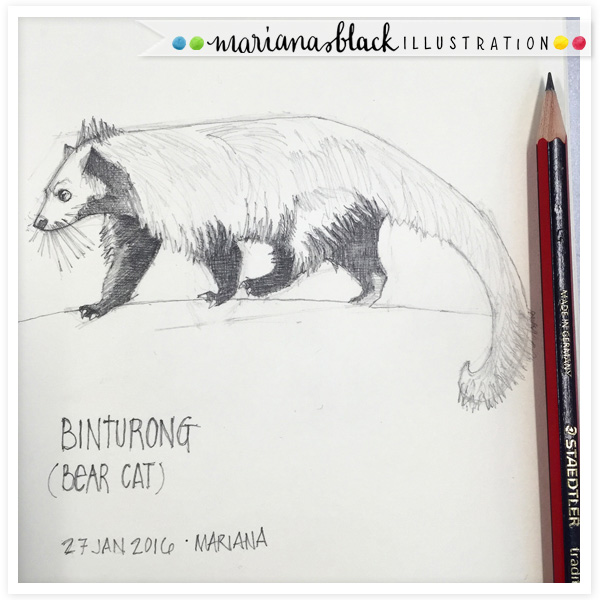 Bear-Cat-Binturong-by-Mariana-Black