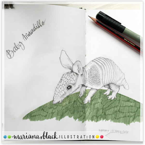 6-Baby-Armadillo-by-Mariana-Black