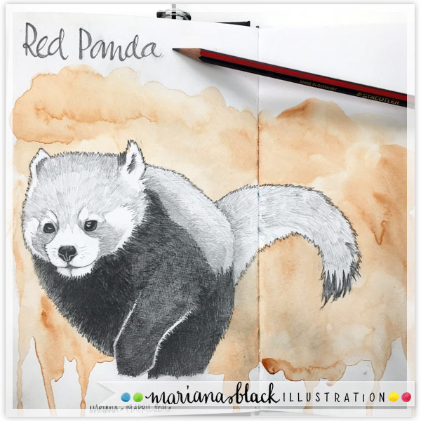 1-Red-Panda-by-Mariana-Black