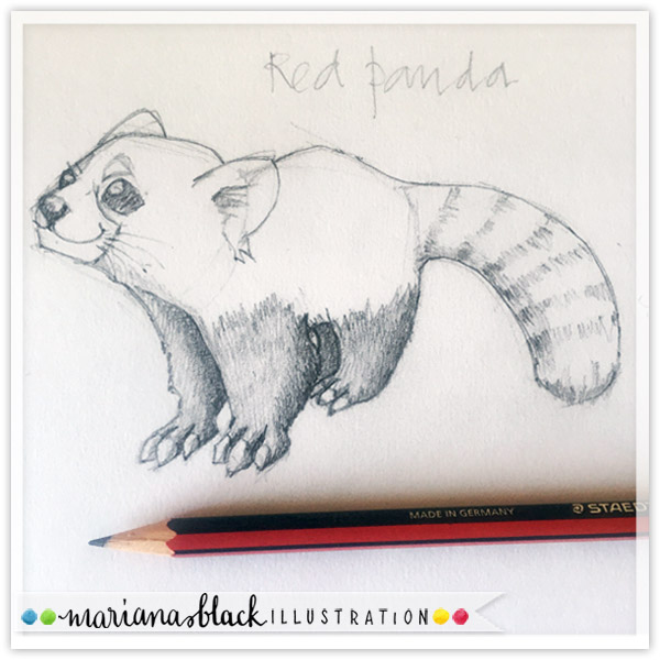 Red-Panda-sketch-by-Mariana-Black