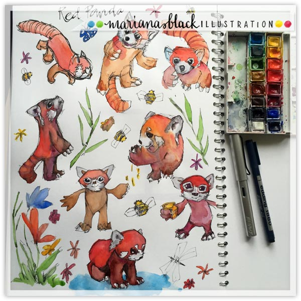 Animal-Sketches-red-pandas-by-Mariana-Black