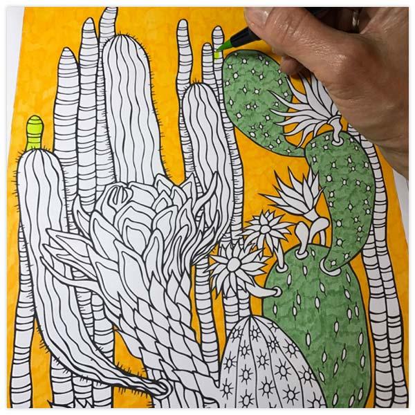 Cactus-wip-2-by-Floating-Lemons