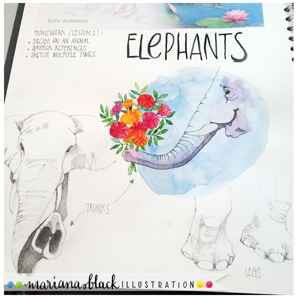 Sketching-elephants-1-by-Mariana-Black