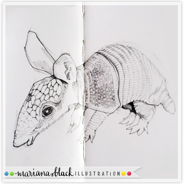 5-Baby-Armadillo-sketch-by-Mariana-Black
