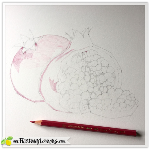 Pomegranates-in-progress-1