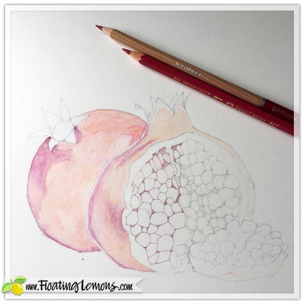 Pomegranates-in-progress-2
