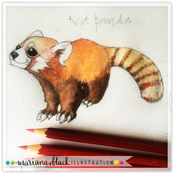 Red-Panda-WC-by-Mariana-Black